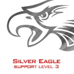 Level 3 The Silver Eagle